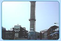 im_desc_ind_plant1